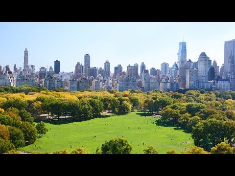 Download New York City's Green Revolution | The B1M HD Mp4 3GP Video and MP3