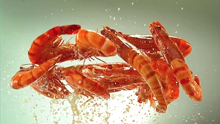 Video Make Your Meal Moments More Special with Coca-Cola! (MY) MP3, 3GP, MP4, WEBM, AVI, FLV Agustus 2017