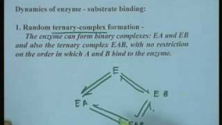 Lecture - 12 Kinetics of Bi substrate Enzyme