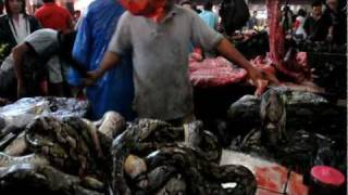 Manado Indonesia  city photos gallery : Tomohon Market Indonesia