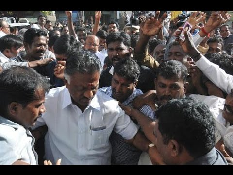 O-Panneerselvam-collects-votes-in-his-Bodi-constituency