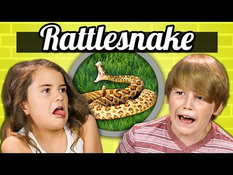 Kids React to Tasting Rattlesnake for the First