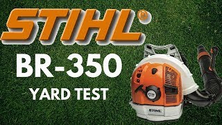 1. Stihl BR-350 Backpack Blower - Front / Backyard Test