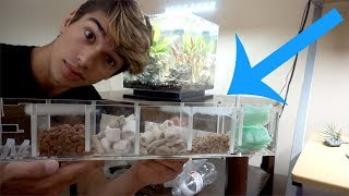 My DIY Aquarium Filter Setup!! by  Challenge the Wild