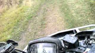 10. 2009 Suzuki King Quad 500 W/Power Steering Ride