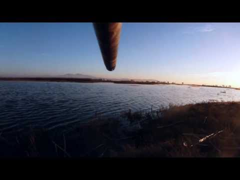 Duck Hunting Contour ROAM Gun Camera California and Texas