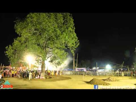 Video Nabakalebara 2015 : Shree Jagannath Daru Chedana download in MP3, 3GP, MP4, WEBM, AVI, FLV January 2017