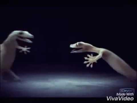 Video Lagur chipkali.......................😍😍😍 love song download in MP3, 3GP, MP4, WEBM, AVI, FLV January 2017