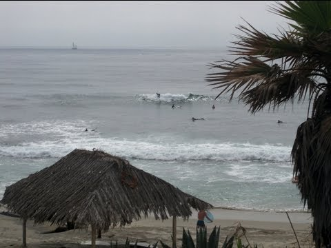 Windansea surf spot