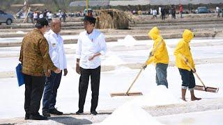 Video Presiden Jokowi Meninjau Tambak Garam, Kupang, 21 Agustus 2019 MP3, 3GP, MP4, WEBM, AVI, FLV Agustus 2019