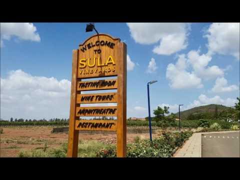 A visit to Sula Vineyards, Nashik