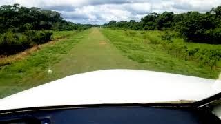 pantanal-mato-grossense