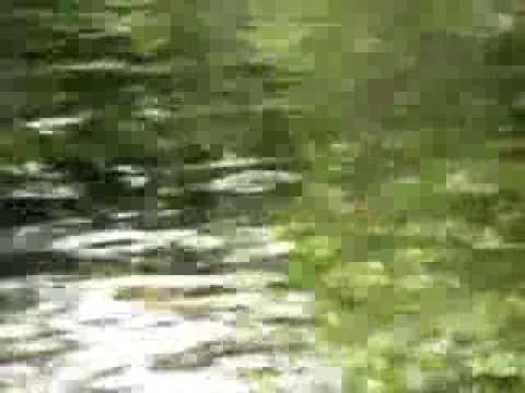 【動画フェス】南阿蘇、夏の竹崎水源