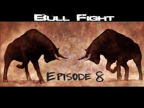 Video Historic Bull Fight in Nepal | Nuwakot Taruka | Must Watch Nepali Video Episode 8 download in MP3, 3GP, MP4, WEBM, AVI, FLV January 2017