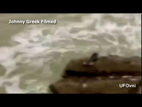 Amazing Mermaid On The Rock  Sirena  Animal Planet