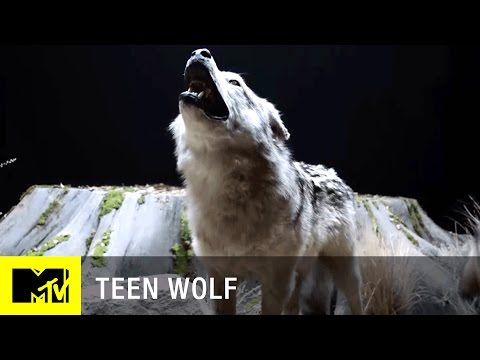 Teen Wolf (Season 6) | 'Beacon Hills Museum' Official Promo Teaser | MTV