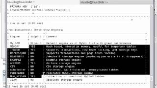 40 Mysql Database Engine CSV