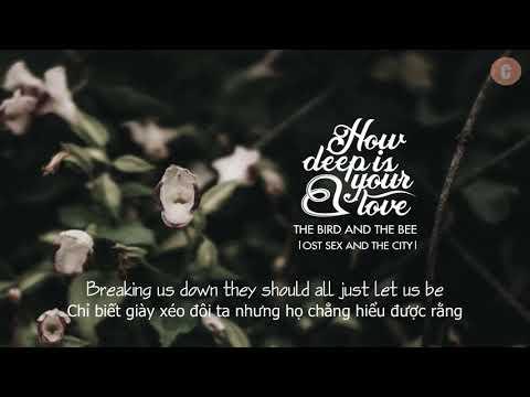 [Vietsub + Lyrics] How Deep Is Your Love - The Bird And The Bee - Thời lượng: 3 phút, 26 giây.