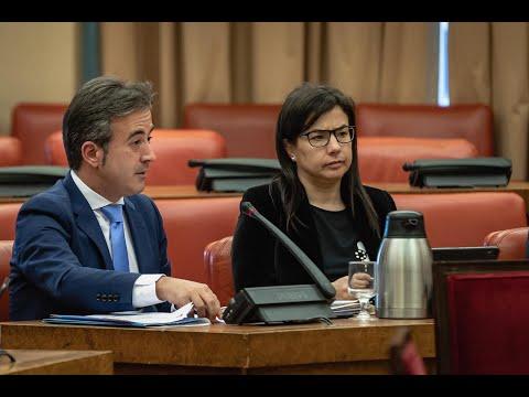 Diego Movellán interviene en la Comisión de Trabaj...