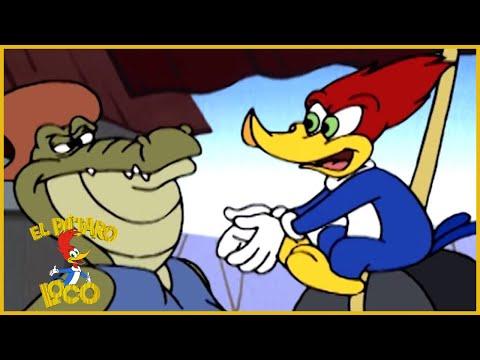 El Pajaro Loco en Español   1 Hora de Compilación   Dibujos Animados en Español