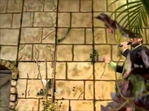 Cuando Todo Esto Pase - Felipe Garibo (Video)