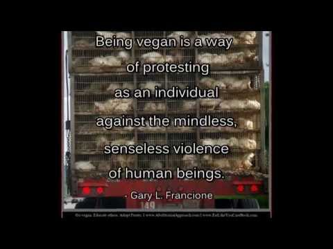 Compilation of Animal Rights Quotes: Professor Gary L. Francione (No. 1)