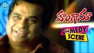 Hungama Movie Brahmanandam All Time Hit Comedy Scenes