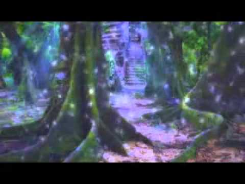 Max Igan-Sovereignity Through Trust Law & Non Compliance 1-4