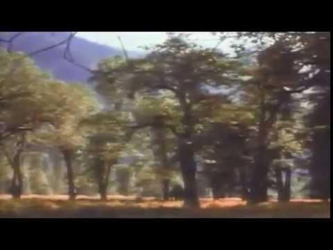 Rev. Oden Hetrick – Testimony of Heaven part 01  of 07