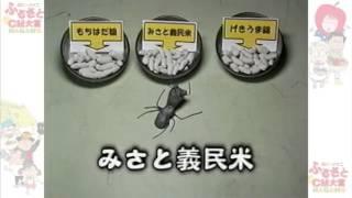 ありぞう君 テレビ観察日記「ご飯編」