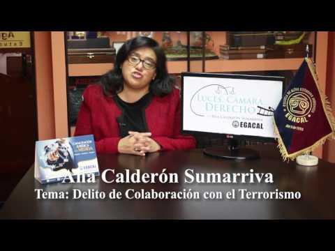 Programa 29 - Delito de colaboración con el terrorismo - Luces Camara Derecho - EGACAL