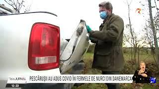 Pescărușii au adus virusul SARS-COV-2 în fermele de nurci