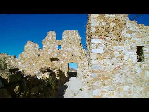 El roure (Pont de Molins) (Alt Empordà)