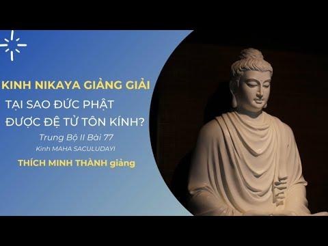 Kinh NIKAYA Giảng Giải-Tại Sao Đức Phật Được Đệ Tử Tôn Kính?Trung Bộ II Bài 77 Kinh MAHA SACULUDAYI