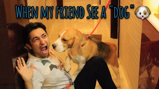 Video Me vs My Friend When We See a DOG. || Harsh Beniwal MP3, 3GP, MP4, WEBM, AVI, FLV April 2018