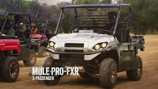 8. 2019 Kawasaki MULE PRO MX   The Herd