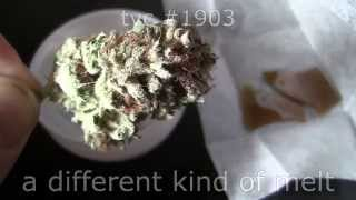 tokin daily: a different kind of melt by Tokin Daily