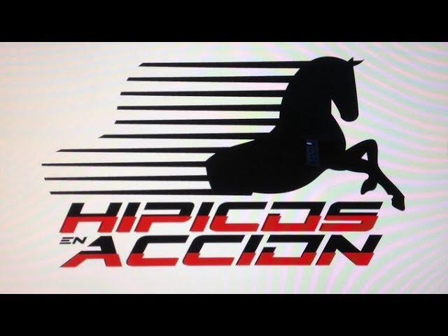 HIPICOS EN ACCION DOMINGO 19/01/2020 LA RINCONADA