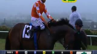HnR Bred Daddy is a Legend Wins Jimmie Durante Grade 3