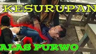 Video Kesurupan Makhluk Gaib Alas Purwo Banyuwangi MP3, 3GP, MP4, WEBM, AVI, FLV Maret 2019