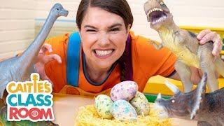 Video Caitie's Classroom Live  - Dinosaurs! MP3, 3GP, MP4, WEBM, AVI, FLV Juni 2019