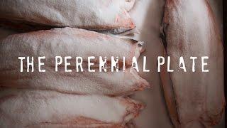 Turf Salmon Smoke   The Perennial Plate by Tastemade