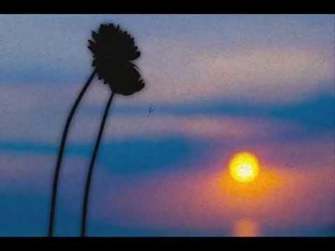Νίκος Καββαδίας - Γράμμα σε ένα ποιητή (видео)
