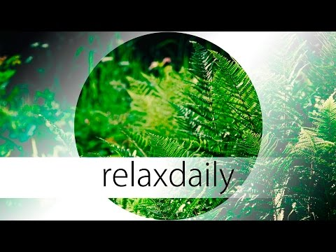 Relaxing Music - smooth, peaceful, dreamy, nature - N°031 (4K)