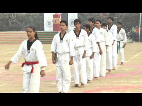 Video Apeejay Pitampura 188 Sports Day Tae-Kwon-Do Year 2015 download in MP3, 3GP, MP4, WEBM, AVI, FLV January 2017