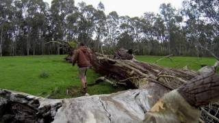Trawool Australia  city images : Canoe trip