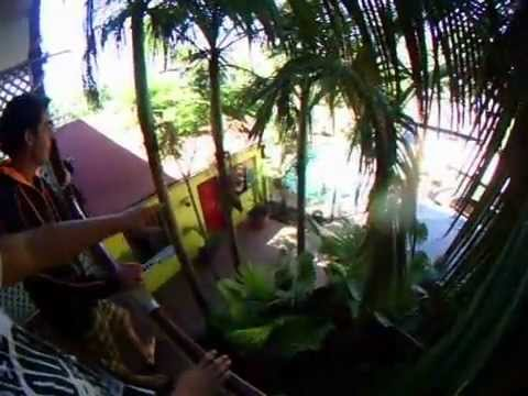Video av Brisbane Backpackers Resort
