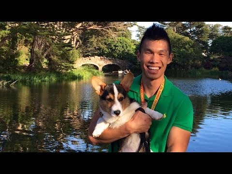 CORGI'S GOLDEN GATE PARK ADVENTURE – Life After College: Ep. 344