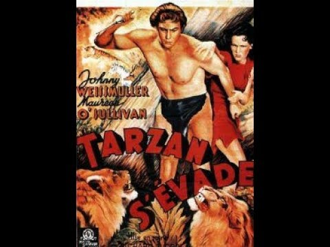 Video Tarzan s'évade download in MP3, 3GP, MP4, WEBM, AVI, FLV January 2017