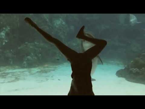 這位女生的動作「竟然吸引到海豚靠近」,海豚看了幾秒鐘竟然還神奇地露出了愉悅笑容!
